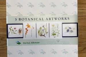 5 Botanical Artworks in Box #1