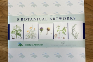 5 Botanical Artworks in Box #2